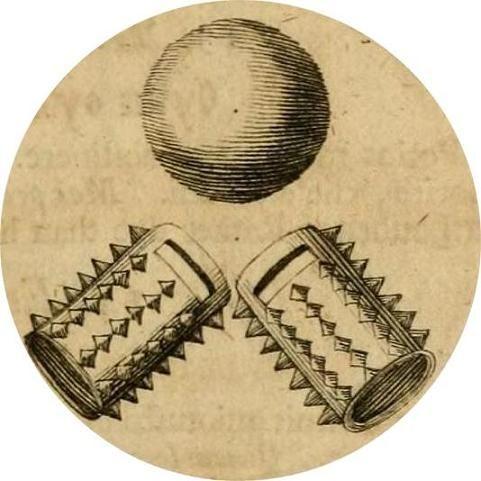 латинская фраза percussus elevor